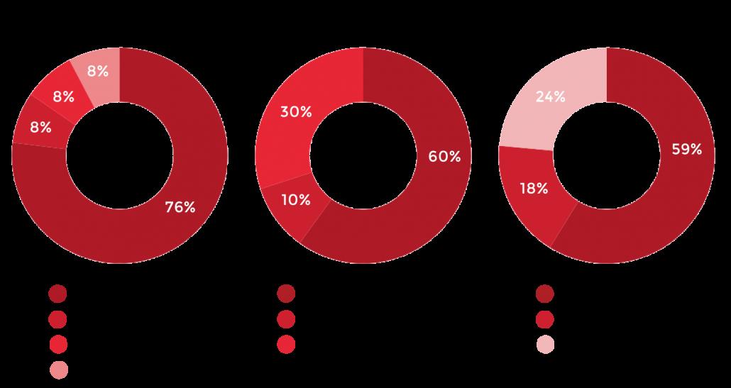 NRV Experience 2020 Demographics Graphs